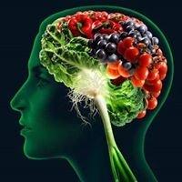 Educazione Alimentare Dott.ssa  Serena Gentili