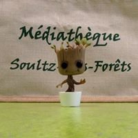 Médiathèque de Soultz-sous-Forêts