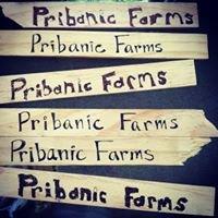 Pribanic Farms
