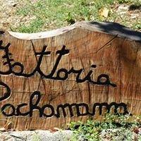 Fattoria didattica Pachamama