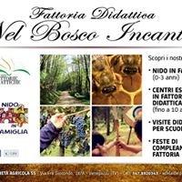 """Fattoria didattica """"Nel Bosco Incantato"""" - Nido in famiglia"""
