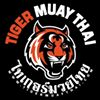 Tiger Muay Thai & MMA Training Camp, Phuket, Thailand thumb