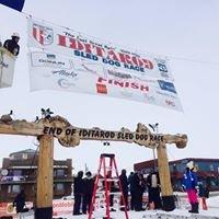 Iditarod Finish Line