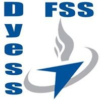 DYESS FORCE SUPPORT SQUADRON