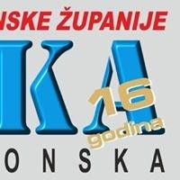 Kronika požeško-slavonska