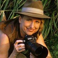 Osprey Photo Workshops & Tours