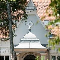 Muzej Moslavine (www.putpodnoge.hr)
