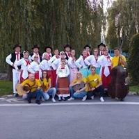 Kulturno športno društvo Predgrad