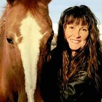 Healing with Horses Sanctuary