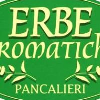 Erbe Aromatiche Pancalieri