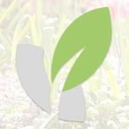 Green Solutions Software GmbH