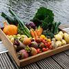 Colebrooke Kitchen Garden