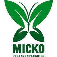 Pflanzenparadies Baumschule Micko