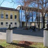 Gimnazija Slovenj Gradec