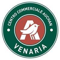 Centro Commerciale Auchan Venaria