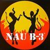 NAU B-3