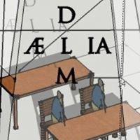 Aelia Media