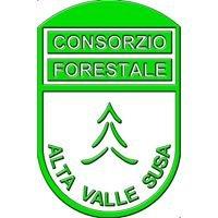 Consorzio Forestale Alta Valle Susa