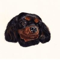 Pet Portraits by Charly Mullins