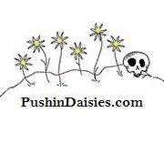 Pushin Daisies Shop