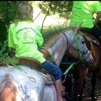 Sunshine acres Ranch horses for sale