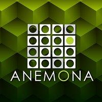 Anemona Qro