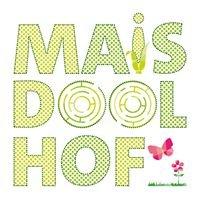Maïsdoolhof  Intratuin Halsteren