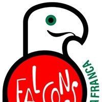 Falcons de Vilafranca