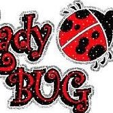 Lady Bug Craft Boutique