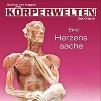 Körperwelten Nürnberg