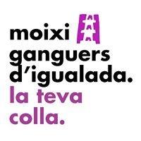 Moixiganguers d'Igualada