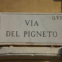 Pigneto Run Around