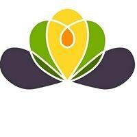 Gea Viva - co-creating synergy living on Brac
