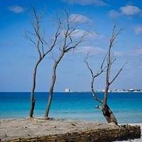 AMP - Area Marina Protetta Porto Cesareo