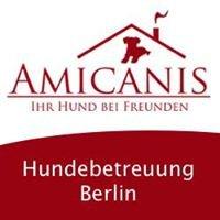 Amicanis