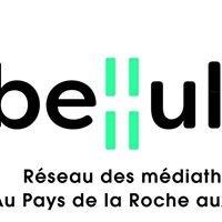 Libellule - Médiathèques du Pays de la Roche aux Fées