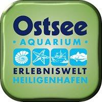 Ostsee Erlebniswelt - Aquarium, Geocenter und Aussichtsturm