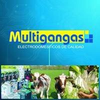 Multigangas