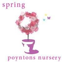 Poyntons Nursery - Plant and garden centre
