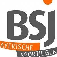 Bayerische Sportjugend im BLSV Sportkreis Erlangen/Höchstadt