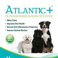 Irish Atlantic Seaweed