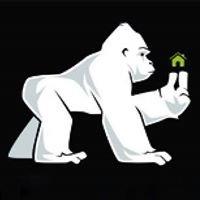 White Gorilla Developments