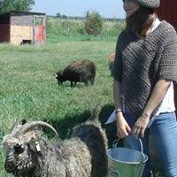 The Straw Family Farm