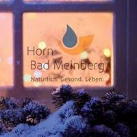hornbadmeinberg.de