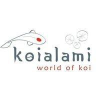 Koialami World of Koi