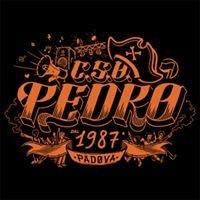 Cso Pedro