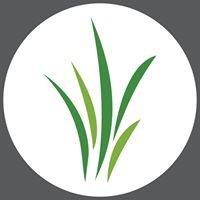 Grassroots Rockford