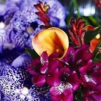 Pompenett студия флористики и дизайна