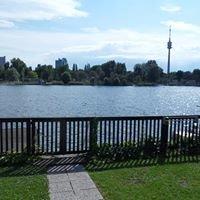 Alte Donau 156