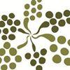 Grapevine Distributors of the Carolinas